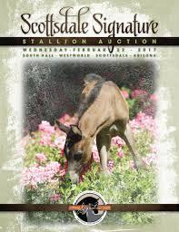 B Om El Regal Scottsdale Signature Stallion Auction Catalog 2017 By Arabian