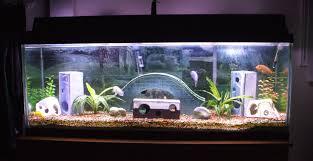 fish tank decoration ideas plus cool fish tank ornaments plus fish