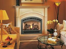 Gas Wood Burning Fireplace Insert by Fuel Types Gas Fireplaces Wood Inserts Electric Fireplaces
