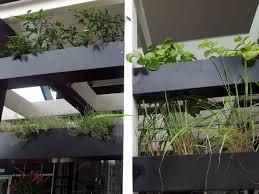 diy indoor herb garden ideas indoor plants expert