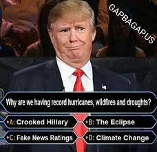 best 25 pictures of donald trump ideas on pinterest donald