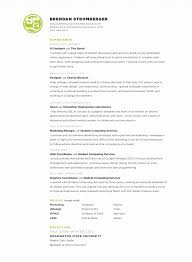 Examples Of Amazing Resumes by 130 Best Clever Resumes Images On Pinterest Cv Design Design
