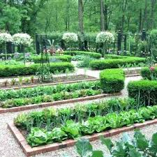 Garden Layout Designs Best Vegetable Garden Layout Plan Hydraz Club