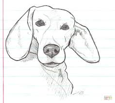 beagle dog coloring free printable coloring pages