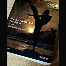 Human Anatomy And Physiology Marieb Hoehn Nus Medicine Nursing Human Anatomy And Physiology Textbook Books