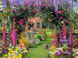 flower gardens wallpaper wallpapersafari