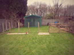 dog pen backyard diy