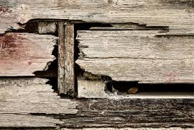 free photo of an old falling apart wooden wall www