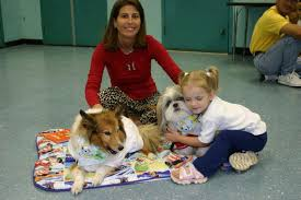 Comfort Dogs Certification Lap Of Love Veterinary Hospice Animal Assisted Therapy Program Hsbc