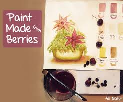 paint made from berries u0026 nature 4 steps with pictures