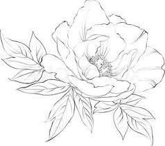 Draw A Flower Vase Coloring Pages Drawing Of A Flower Drawing Of A Flower Vase