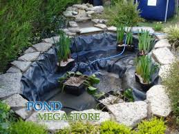 280 best ponds images on koi ponds fish ponds and