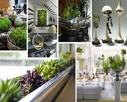 Indoor Gardening Ideas Interior Wonderful Indoor Garden Design Ideas Inspirative Indoor