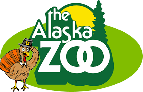 zoo closed on thanksgiving day the alaska zoo