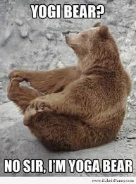 Meme Bear - bear meme dump album on imgur