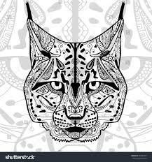coloring book adults black white bobcat stock vector 363844049