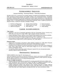 examples of marketing resumes executive resume entertainment executive resume