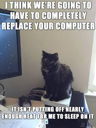 Computer Problems Meme - helpdesk kitten can diagnose your computer problems meme on imgur