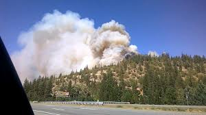 Wildfire California Video by California Wildfire Ravages Small Town Of Weed Nbc News