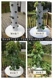 my first aeroponic tower garden tower garden pinterest