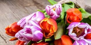 fresh cut flowers 5 ways to care for fresh cut flower arrangements laurel grove