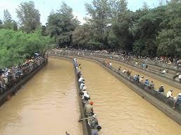 Umpan Mancing tips memancing di sungai keruh dan jernih