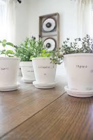 270 best planting u0026 gardening ideas images on pinterest indoor