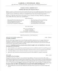 sample resume executive manager sample executive resumes u2013 foodcity me