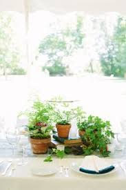 Potted Plants Wedding Centerpieces by Simple Backyard Nantucket Wedding Once Wed Wedding