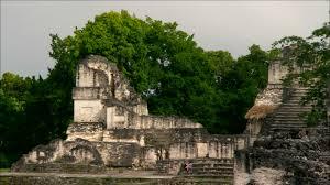 imagenes mayas hd temple rainforest tikal hd stock video 145 015 601 framepool