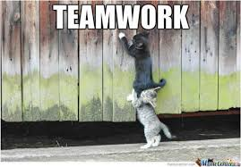Teamwork Memes - teamwork because together we can accomplish anything 17 funniest