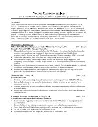 exles of combination resumes resume for freight forwarding company resume for study