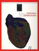 Principles Of Anatomy And Physiology 13th Edition Tortora Principles Of Anatomy And Physiology 13th Edition Binder Ready