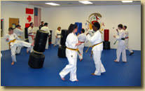 Hamilton Of Martial Arts Jiu by About