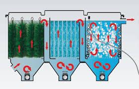 le uv pour etang filtre pour bassin filterline bed 30m3 expert bassin expert bassin