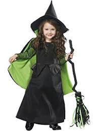 661 Best Witches Images On Pinterest Halloween Witches Amazon Com Wizard Of Oz Deluxe Glinda The Good Witch Costume