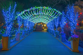 phipps conservatory christmas lights phipps winter flower show and light garden is bigger than ever