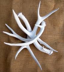 bright white deer antlers set of 3 home decor u0026 lighting
