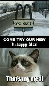 Frown Cat Meme - image 545624 grumpy cat know your meme