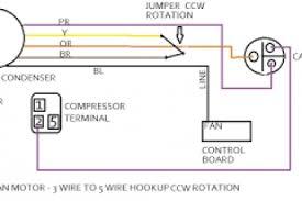 century motor wiring diagram d1076 ac capacitor diagram ac motor