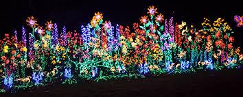 Botanical Gardens Christmas Lights by Christmas Lights Bellevue Christmas Lights Decoration
