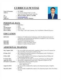 Excellent Resume Examples by The Perfect Resume Format