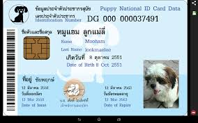 pet identity card android apps on play