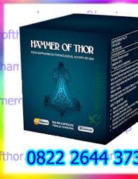 agen hammer of thor di bengkulu 082226443731 by vinda farma