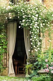 garden dreams a collection of gardening ideas to try gardens