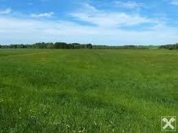 landwirtschaftliche fläche kaufen landwirtschaftliche nutzfläche kaufen