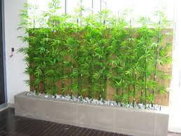 hoi kee flower shop planter box 54