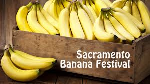 spirit halloween natomas sacramento banana festival sacramento tickets n a at william