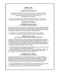 Resume Objective For A Bank Teller U0026 Lending Executive Resume