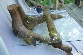 Home Design And Decor Reviews Home Decor Hammary Hidden Treasures Root Ball Coffee Table